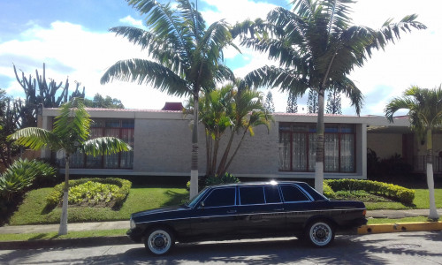 COSTA-RICA-PALM-TREE-MANSION.-MERCEDES-W123-SEDAN-LANG-LIMOUSINEadf2f5b08b6e1b7a.jpg