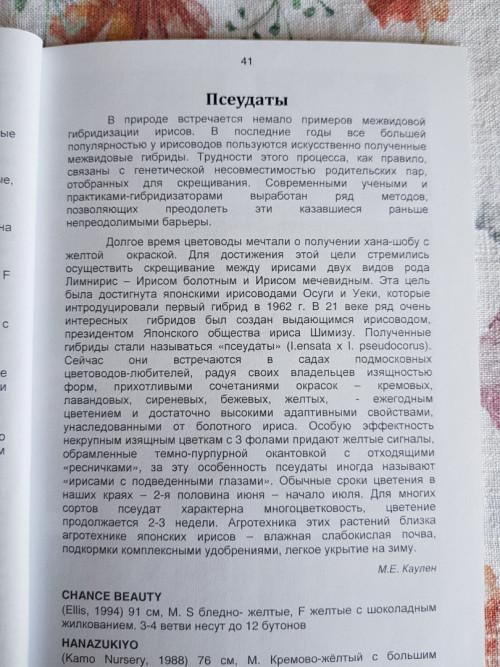 pseu_text3b777ca20e605838.jpg