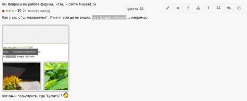 Screenshot_2019-05-14-VOPROSY-PO-RABOTE-FORUMA-CATA-I-SAITA-tvoysad-ru---STRANITA-1073e8b07fb540a6fb.png