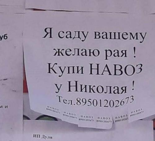 NAVOZ-U-NIKOLAYbfd7b3401b33ca41.jpg